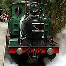 West Coast Wilderness Railway Steam Train by Sprinkla