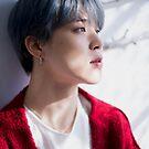 «BTS Jimin - Retrato de invierno» de KpopTokens