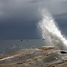 Bicheno Blowhole by Fiona Kersey