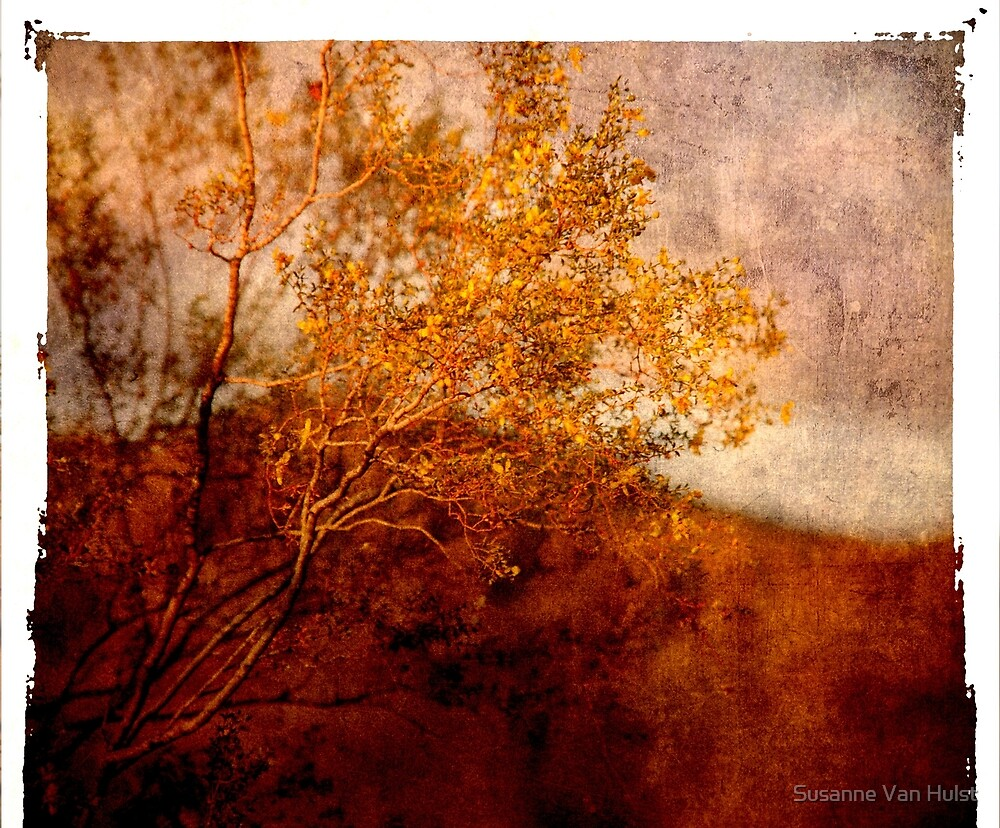 Yellow Tree by Susanne Van Hulst