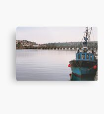 Bruno at Bideford Metal Print