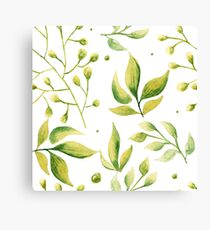 Herbaceous greens watercolor Canvas Print