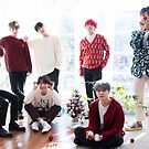 BTS Holiday Theme Group Photo - 2018/2019 by KpopTokens