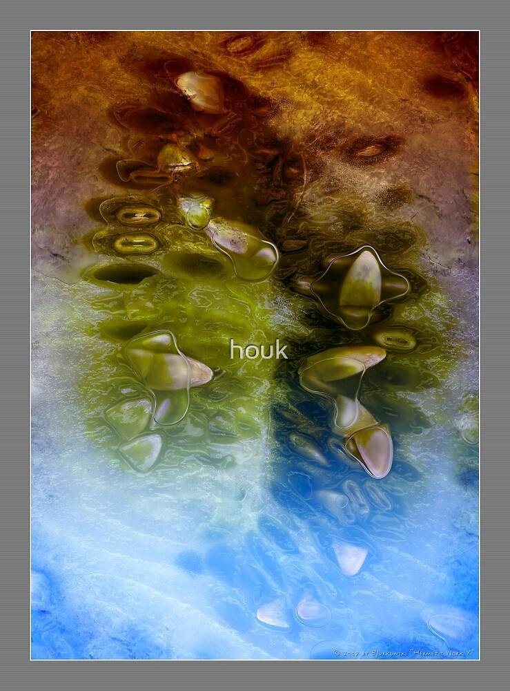 Hermetic Work X by houk