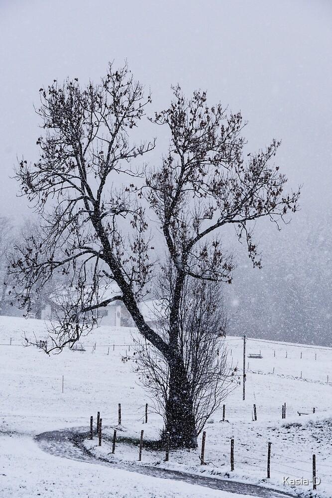 Let it Snow, Let it Snow, Let it Snow by Kasia-D
