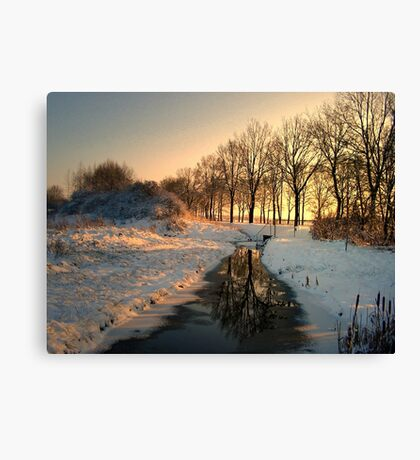 Stream in January Canvas Print