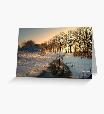 Stream in January Greeting Card