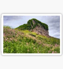 Wildflowers Surround the Historic Stonework Lime Kiln Sticker