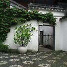 Gate Chinese Garden  by Dale Lockridge