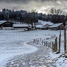 Bavarian Farm in Winter by Kasia-D