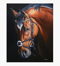 Frankel Photographic Print