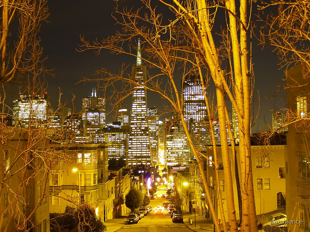 San Francisco views from Telegraph Hill by aambience