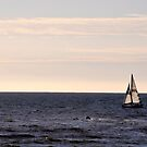 Sailing In Santa Monica by Clayton Bruster