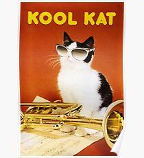 Póster Kool Kat