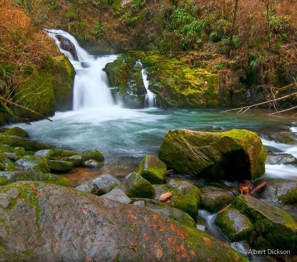 Sweet Creek, Playful Falls by Albert Dickson
