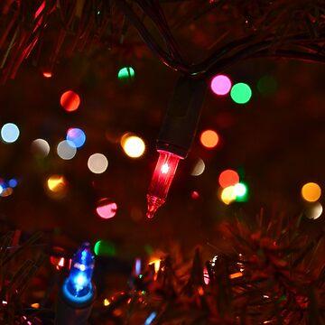 Christmas Light by MarthaMedford