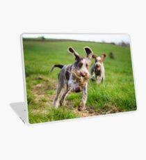 Italian Spinone Puppies Playing Chase Laptop Skin