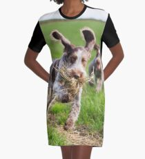Italian Spinone Puppies Playing Chase Graphic T-Shirt Dress