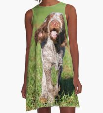 Brown Roan Italian Spinone Puppy Dog In Action A-Line Dress