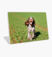 Brown Roan Italian Spinone Puppy Dog In Action Laptop Skin