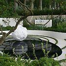 Chelsea Flower Show 09 - Cancer Research Garden by BronReid