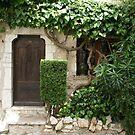 pretty vine covered house, St Paul de Vence, France by BronReid