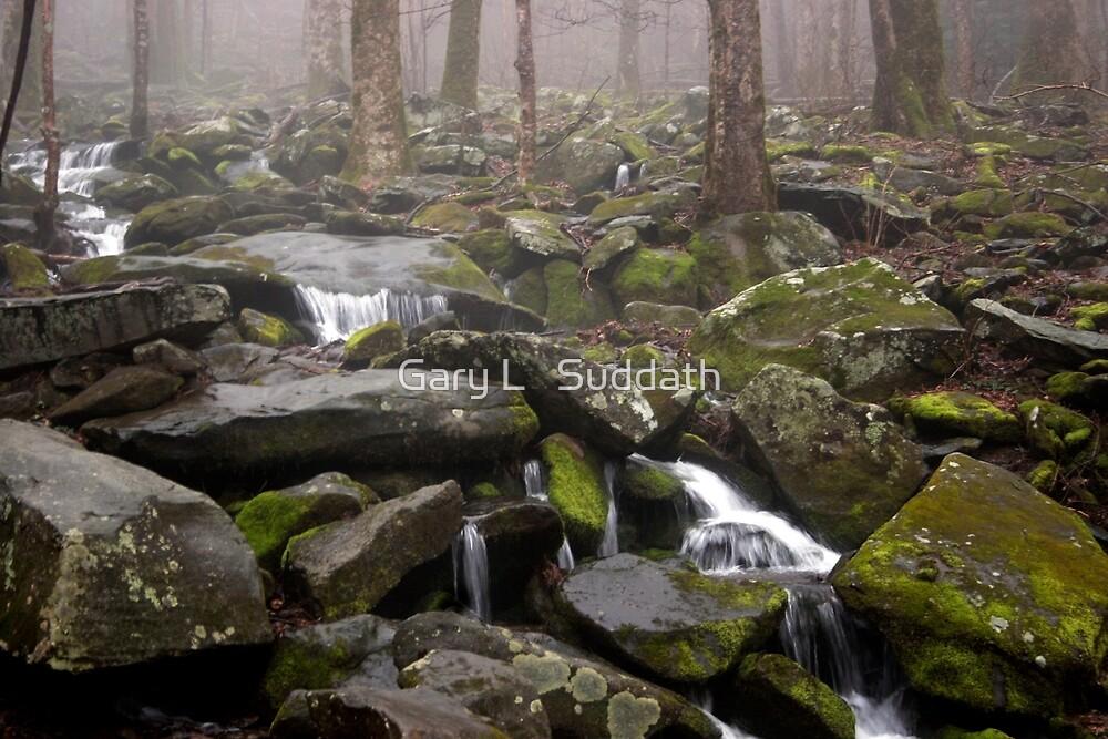 Foggy Mountain Creek by Gary L   Suddath