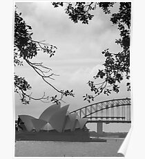 Sydneysiders  Poster