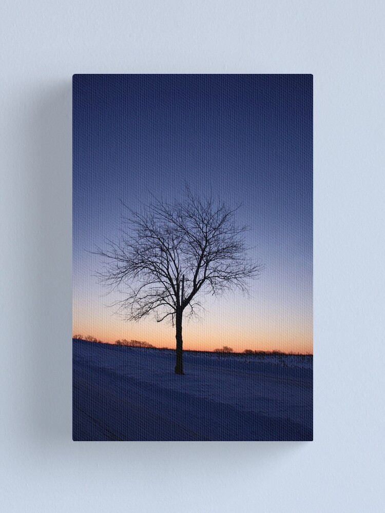 Alternate view of A New Year Dawns Canvas Print