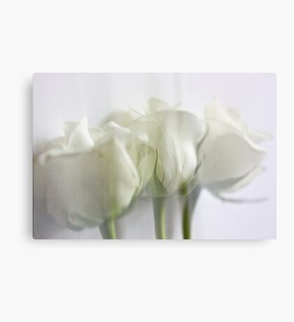 Dreaming in white Canvas Print