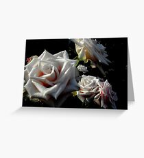 Blushing Roses Greeting Card