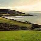 Devon by Squealia