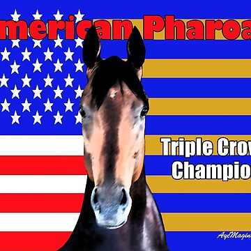 American Pharoah Portrait by ayemagine