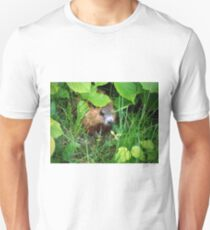 Cute Shy Peek a Boo Baby Groundhog  T-Shirt