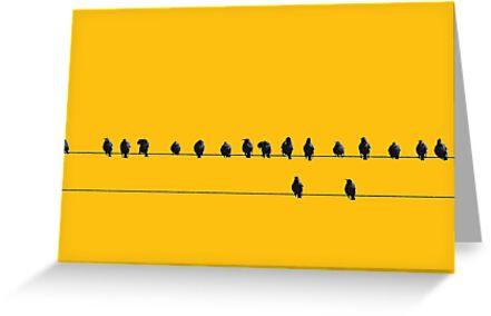 Birds on a Wire by mattslinn