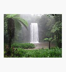 Milla Milla falls, Nth Qld Australia Photographic Print