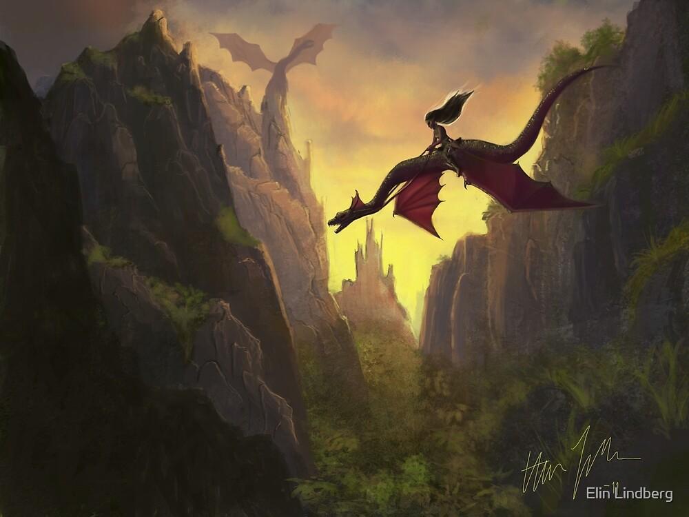 Dragon Rider by Elin Lindberg