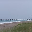 Juno Beach Pier by DianaTaylor/ JacksonDunes