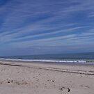 Ocracoke Island Beach by DianaTaylor/ JacksonDunes