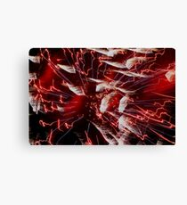 Feathered Souls Canvas Print