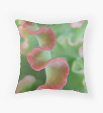 curly leaf succulent Throw Pillow