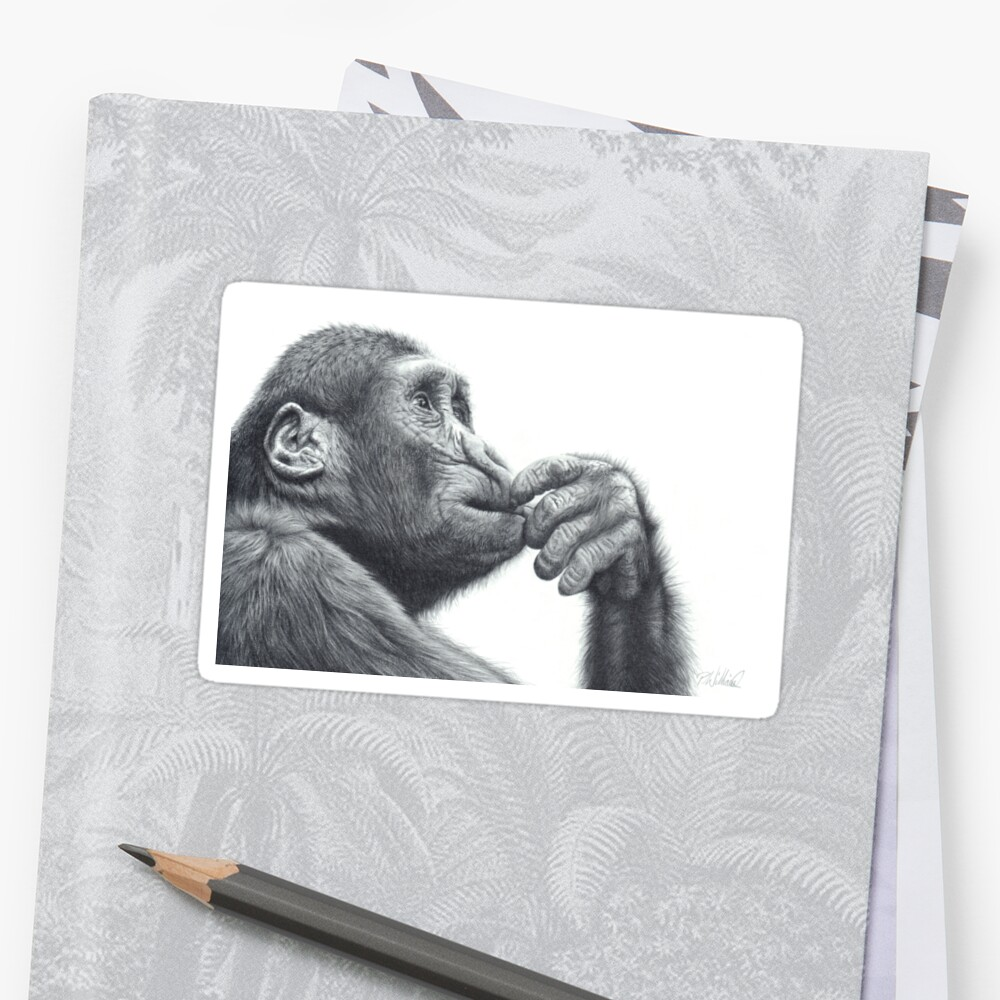 Brainstorm chimpanzee pencil drawing stickers