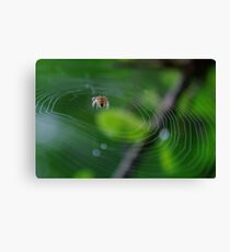 This is MY World Wide Web Canvas Print