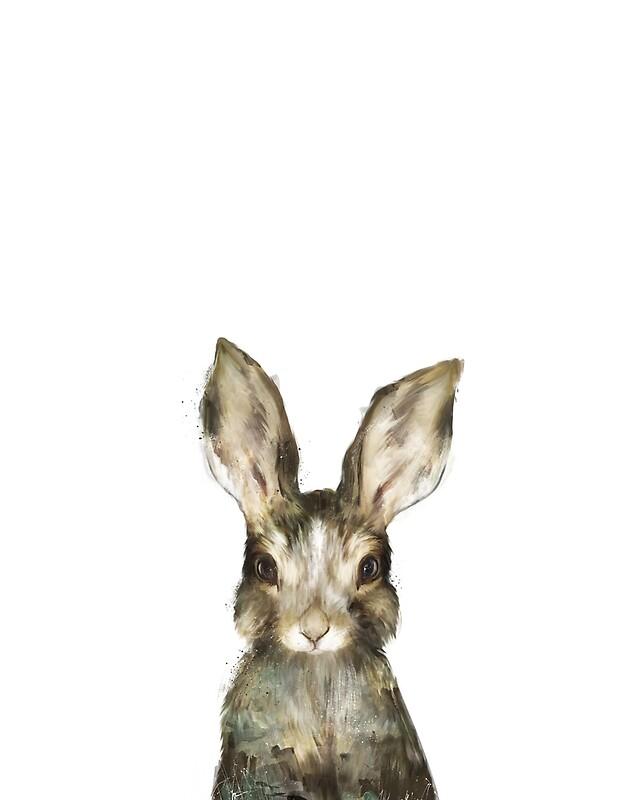 Rabbit: Wandbilder | Redbubble