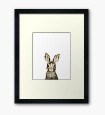 Lámina enmarcada Pequeño conejo