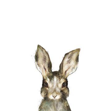 Kleiner Hase von AmyHamilton