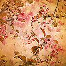 Cherry Blossom Tapestry by Jessica Jenney