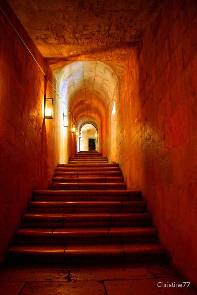 Secret passageway by Christine Oakley