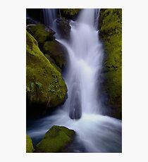 Whitehead Creek #6 - luminescence Photographic Print