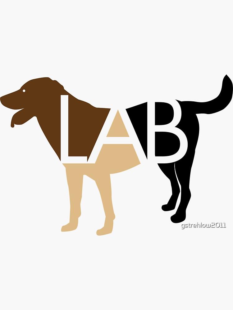 Labrador Labrador marrón chocolate amarillo y negro de gstrehlow2011